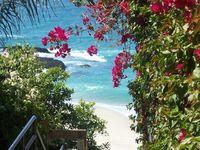 A Path to the Beach / The beach continually calls