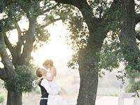 Dresses, weddings, and happy endings, oh my!