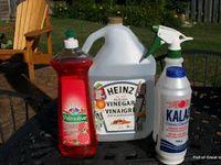 Gardening:Insects, Watering, Hand Scrub, Feeding