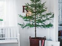 decor, gift wrapping, and ideas for Christmas celebrations & traditions