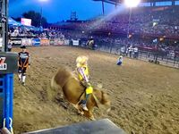 Love To Watch Bull Riding