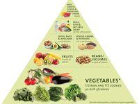 Dr, Fuhrman diet