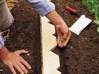 Garden and Outdoor Board