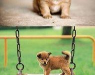 Cuteness!!!