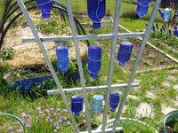 Wine Bottles reused