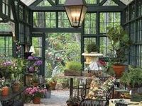Ideas for the greenhouse and conservatory in my future