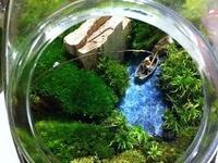 How to's, Dioramas, Fairy houses, miniatures.