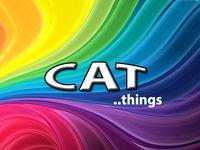 CAT THINGS / CAT THINGS