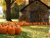 """FALL"" my favorite time on the year/Halloween/Thanksgiving"