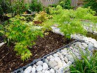 Planting / #planting #foliage #flowers