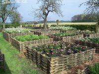 zahrada,ploty