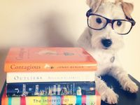 Read to Ruff and other Library Critters