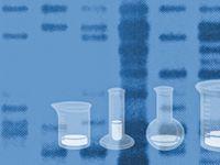 1000+ images about DNA Fingerprinting on Pinterest