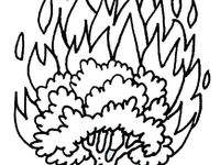 triptastic coloring pages | 42 best images about Moïse Buisson ardent on Pinterest ...