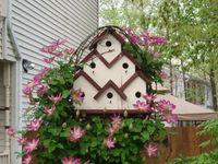 birdhouses & birdbaths