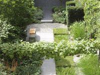 tuinontwerpen met rechte vormen / strakke tuinontwerpen met voldoende planten