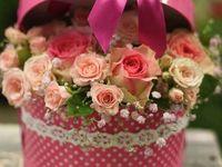 Квіти-Подарунок