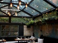 trädgård och terass