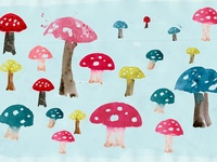mushrooms toadstools