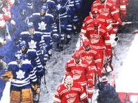 Toronto Maple Leafs / Sports