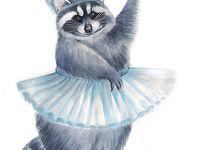 <b>8</b> Best Raccoon images