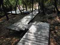 Boardwalk design