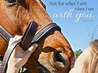 valentine horse jokes