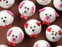 Cake/Cupcake Designs