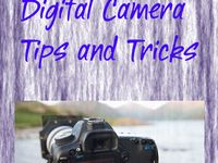 Photo tips : figuring out a new little hobby