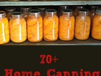 How To Can Jams Jellies and Veggies