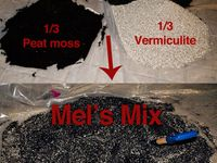 Vermiculite - Growing medium / Vermiculite as a medium for propagating seeds and growing plants