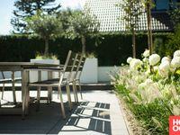 Buytengewoon villatuin ermelo tuin