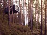 Treehouses and Tents