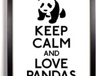 I love pandas,  always have and probably always will