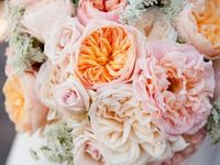 Coral and Peach Weddings