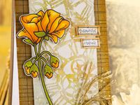 Cards - Autumn