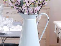 Flowers-Plants-Terrariums