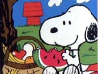 81 Best Snoopy Amp The Peanuts Gang Images On Pinterest