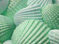 Color - Mint