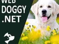 60+ Best of WebDoggy.net ideas in 2020 | dogs, your dog, pets
