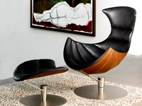 Some new and some classic pieces, amazing furniture design for the modern naturalist