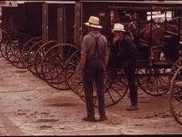 Amish, Mennonite, Hutterite, etc