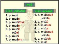Čeština,škola