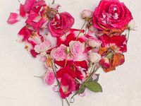 Petals and Posies