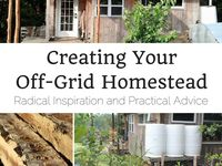 1000+ images about Greenhouse from scratch on Pinterest | Vegetable ...
