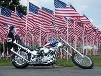 American Patriotics