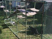 100+ Rumah kucing ideas in 2020 | cat enclosure, outdoor ...