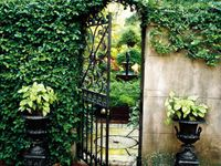 Garden & Outdoor Enclaves