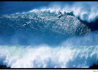 Big Wave Surfing / Big Wave Surfing