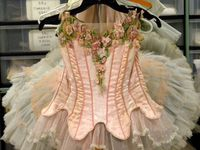 Ballet costumes and tutus